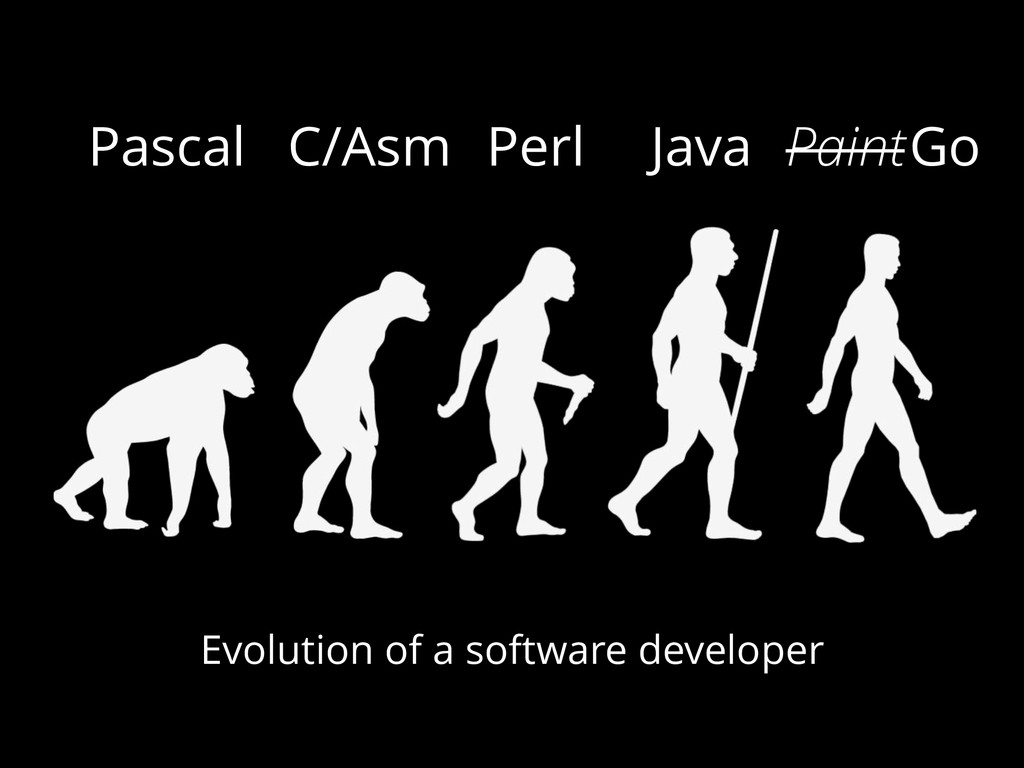 Pascal C/Asm Perl Java Evolution of a software ...