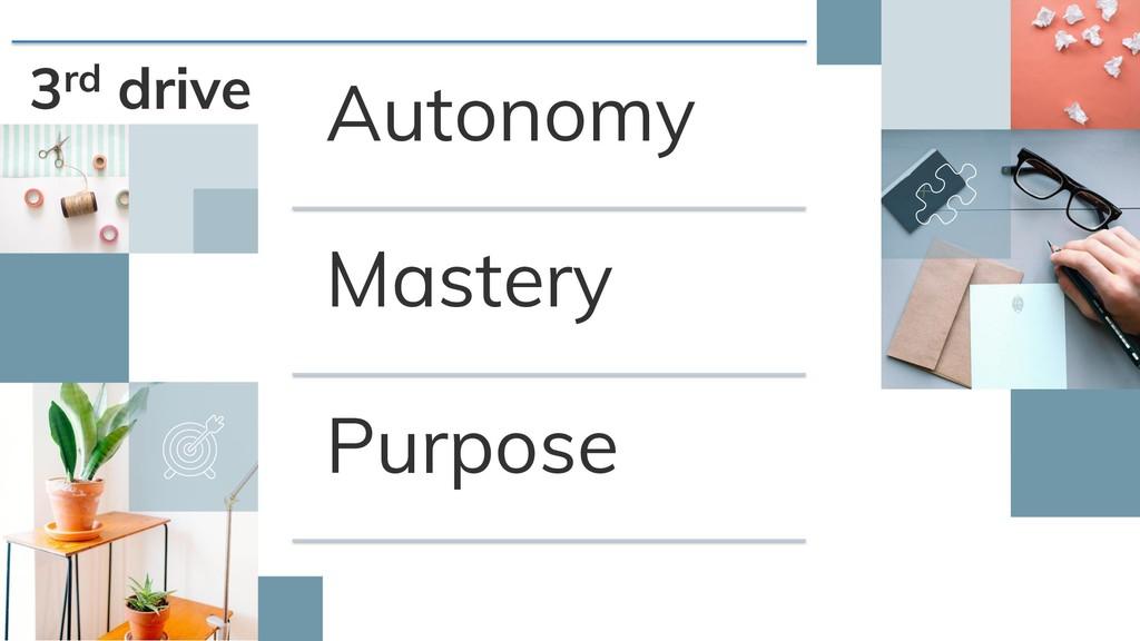 3rd drive Autonomy Mastery Purpose