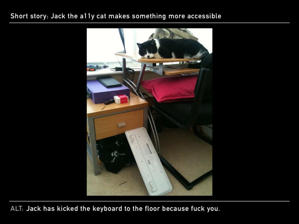 ALT: Short story: Jack the a11y cat makes somet...