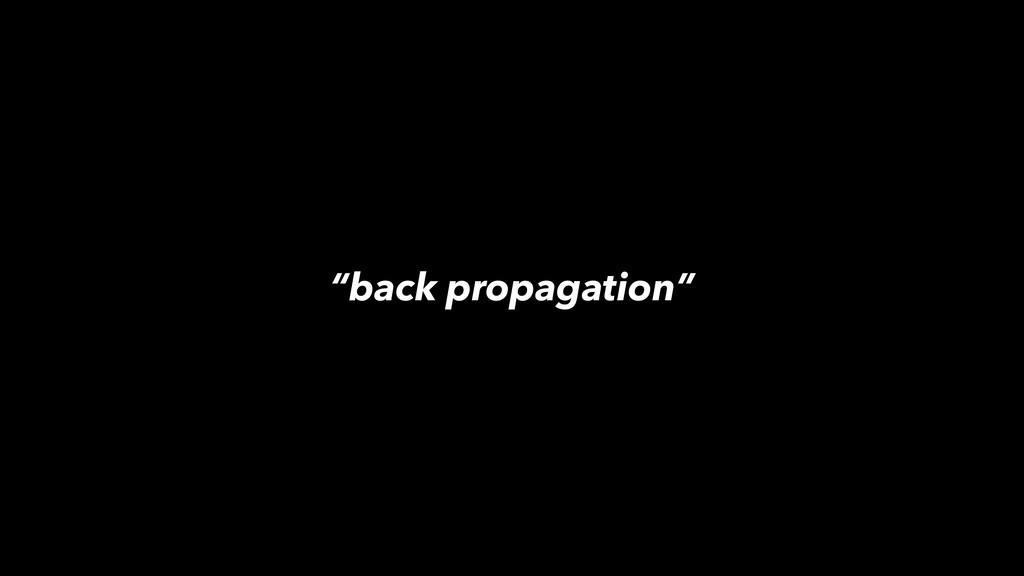 """""""back propagation"""""""