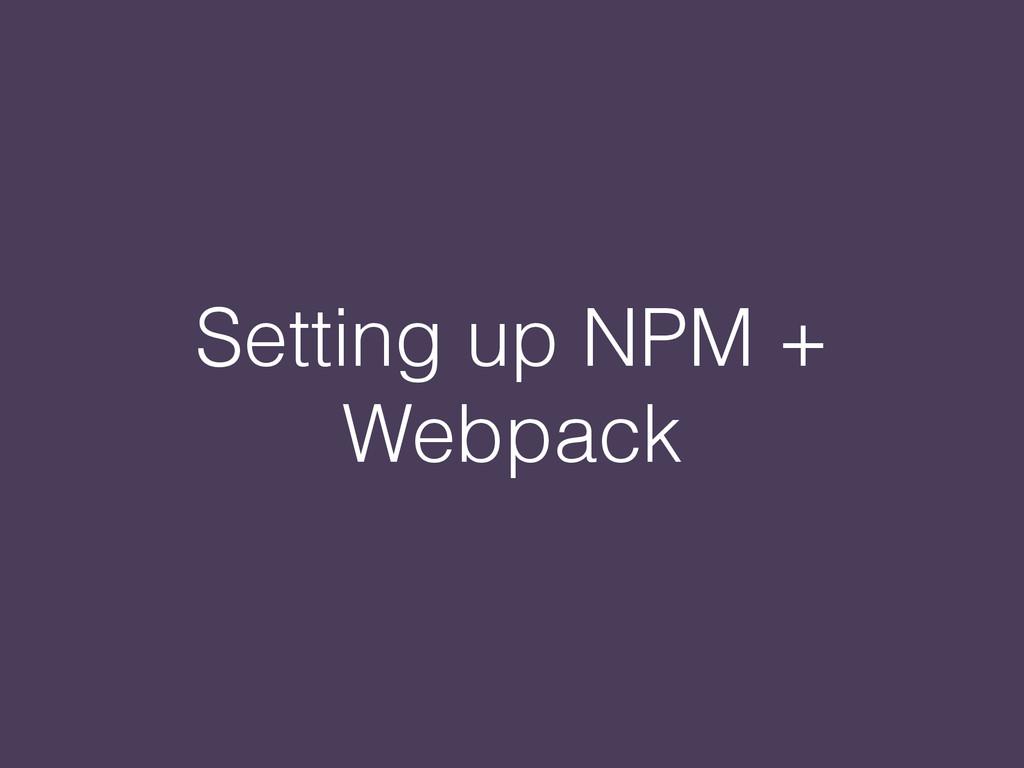 Setting up NPM + Webpack