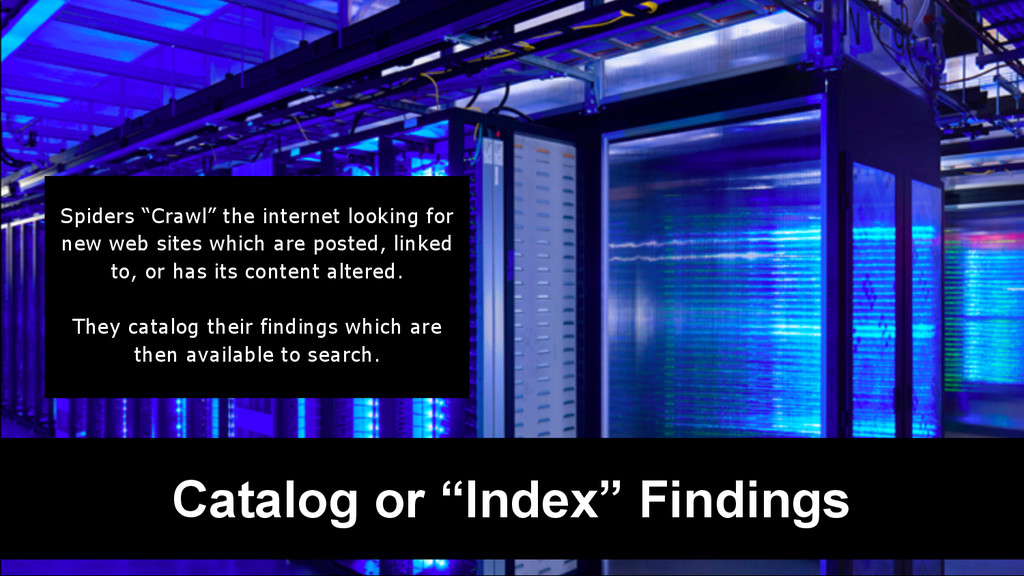 "Catalog or ""Index"" Findings Spiders ""Crawl"" the..."