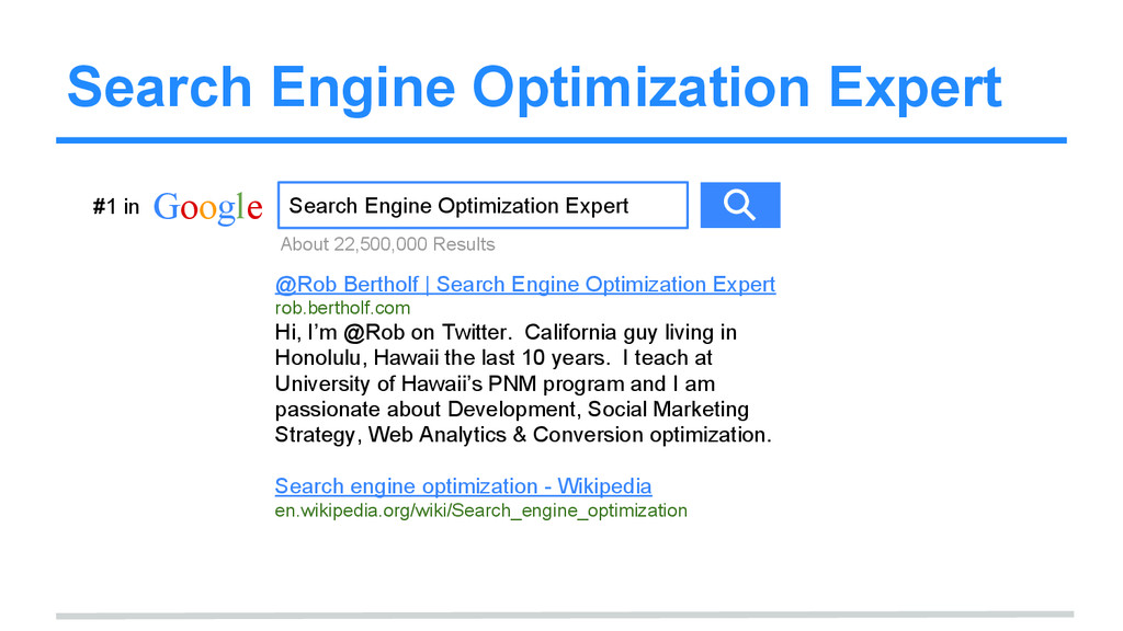 Search Engine Optimization Expert Google Search...