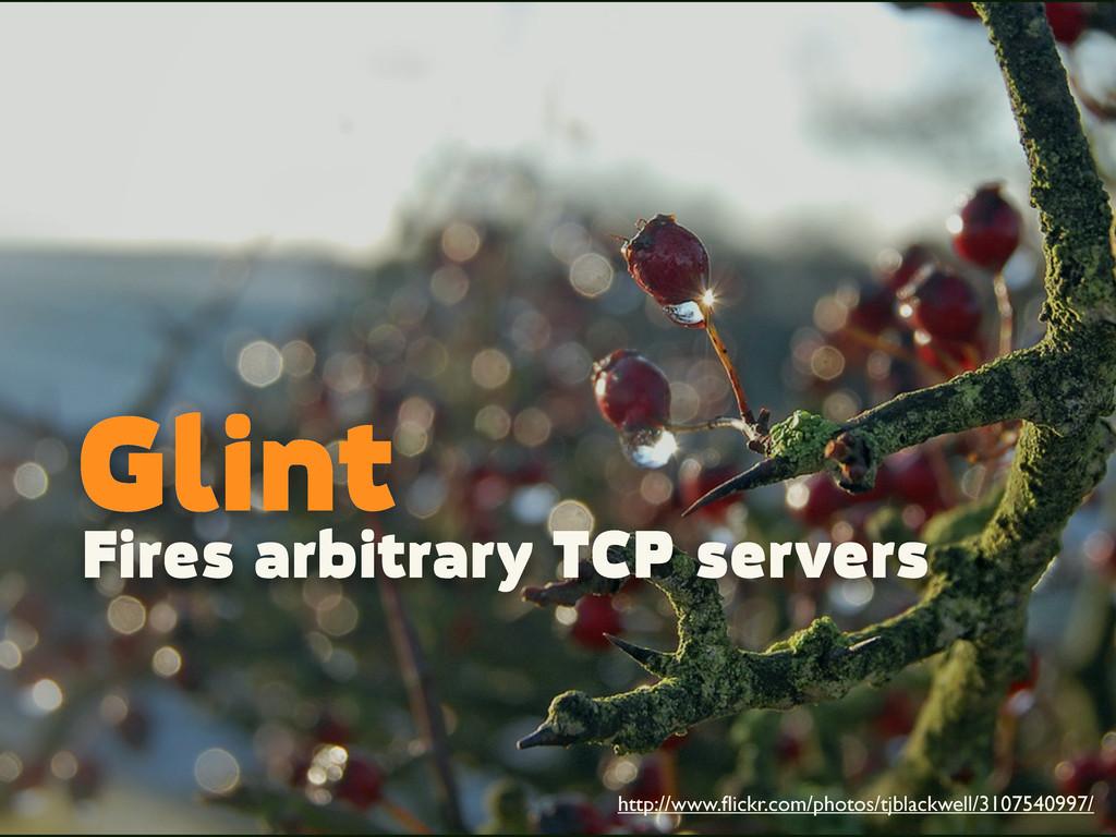 Glint Fires arbitrary TCP servers http://www.fli...