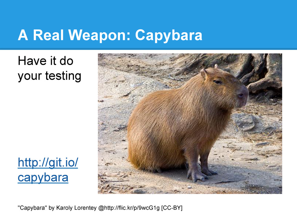 "A Real Weapon: Capybara ""Capybara"" by Karoly Lo..."