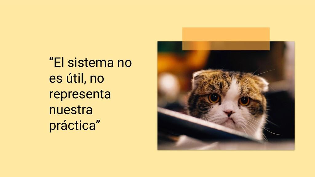 """""""El sistema no es útil, no representa nuestra p..."""