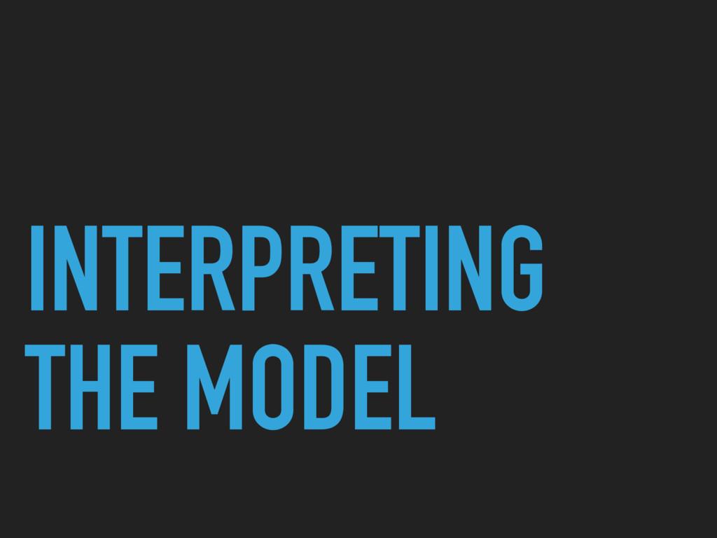 INTERPRETING THE MODEL