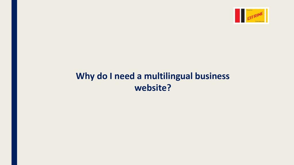 Why do I need a multilingual business website?