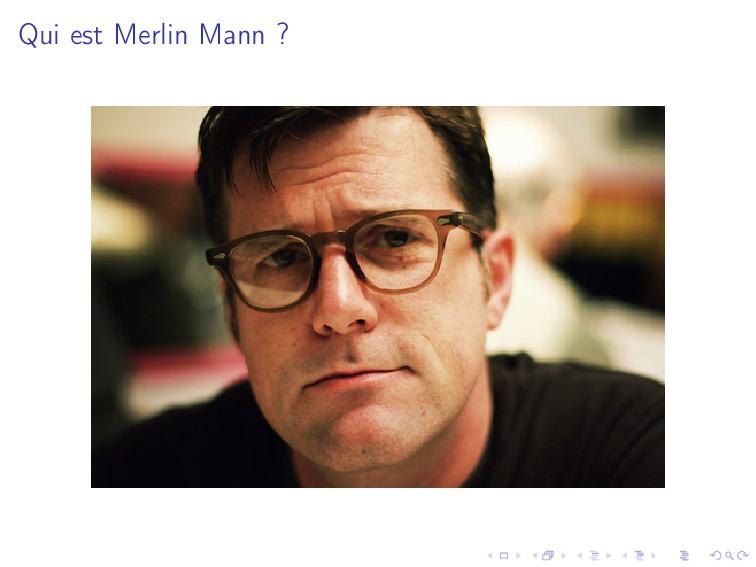 Qui est Merlin Mann ?