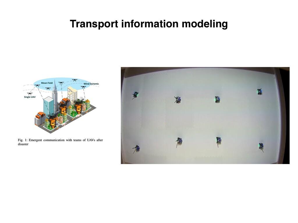 Transport information modeling