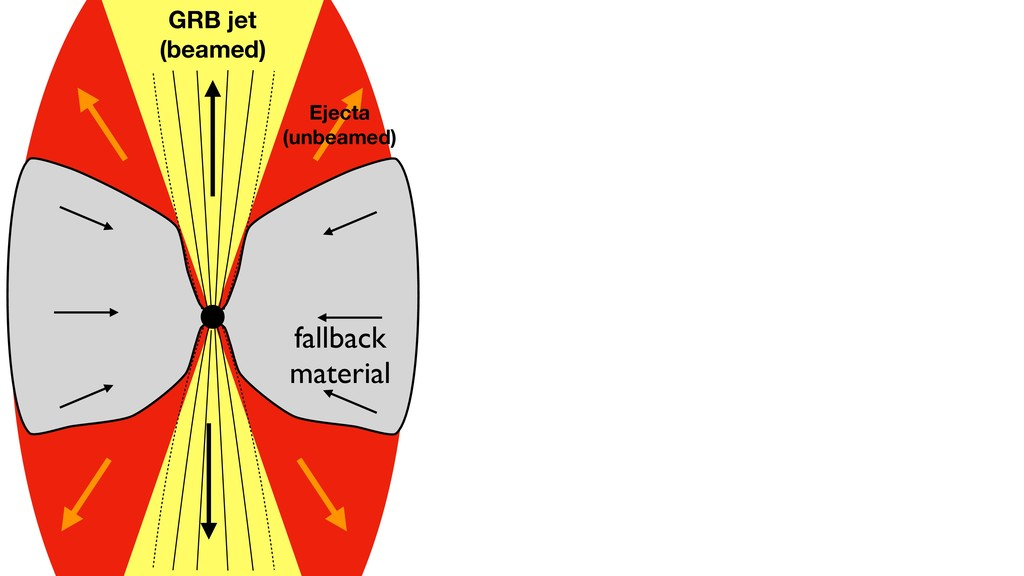fallback material GRB jet (beamed) Ejecta (unbe...