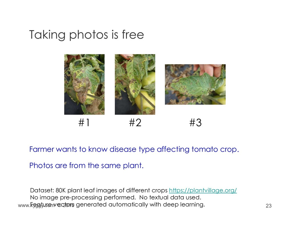 23 Taking photos is free Farmer wants to know d...