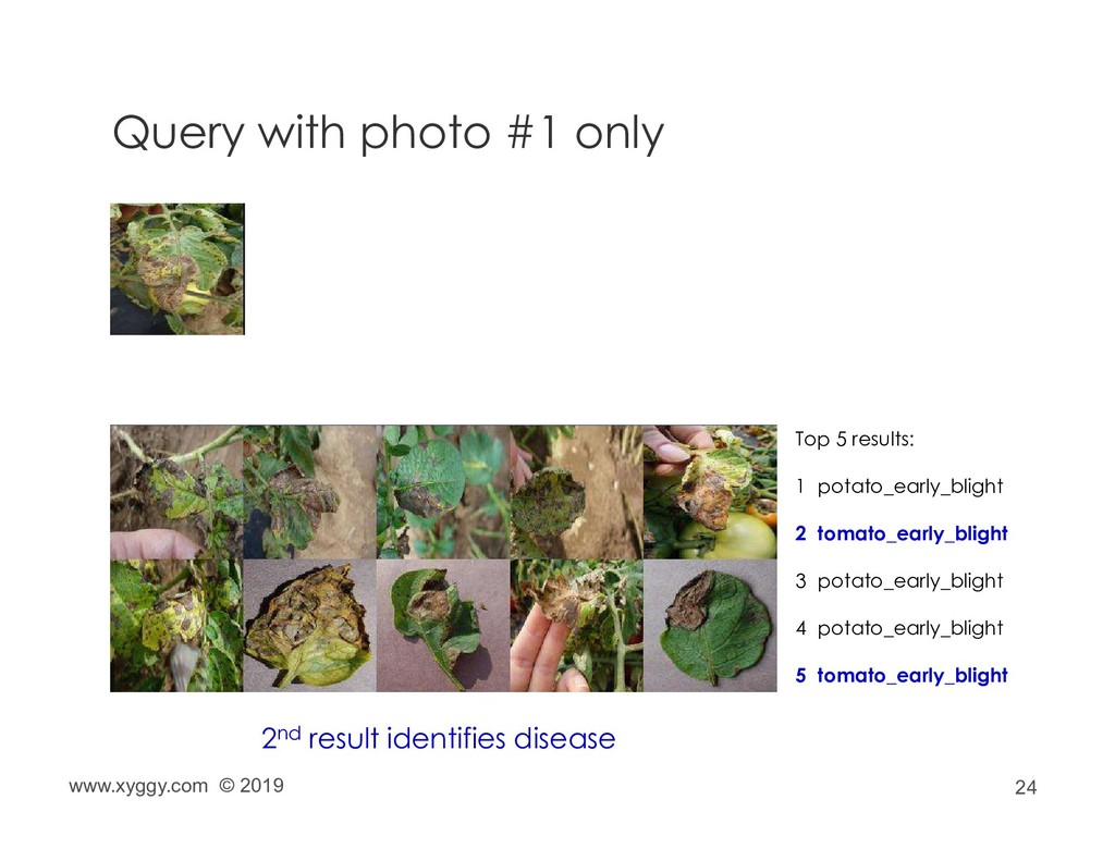 24 Query with photo #1 only Top 5 results: 1 po...