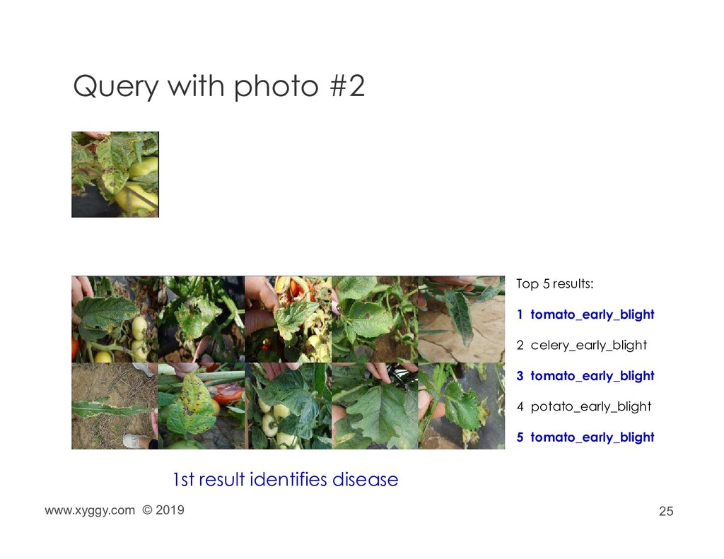 25 Query with photo #2 Top 5 results: 1 tomato_...