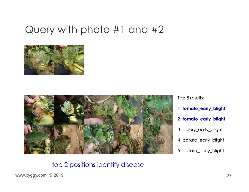 27 Query with photo #1 and #2 Top 5 results: 1 ...