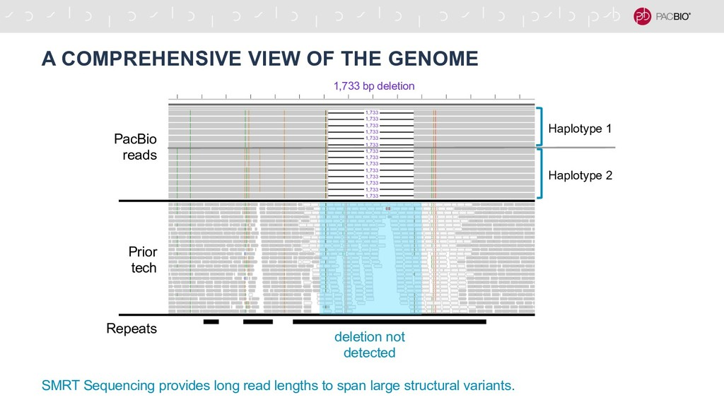 A COMPREHENSIVE VIEW OF THE GENOME SMRT Sequenc...