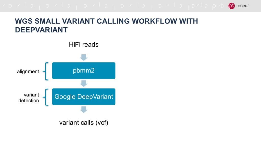 HiFi reads pbmm2 Google DeepVariant variant cal...