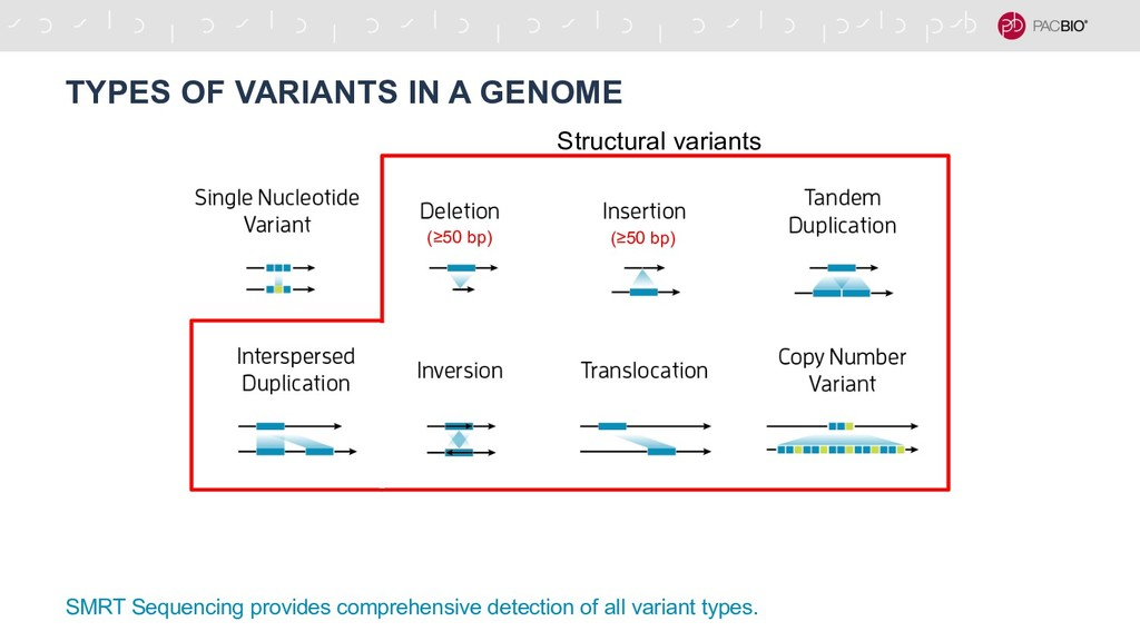 TYPES OF VARIANTS IN A GENOME SMRT Sequencing p...