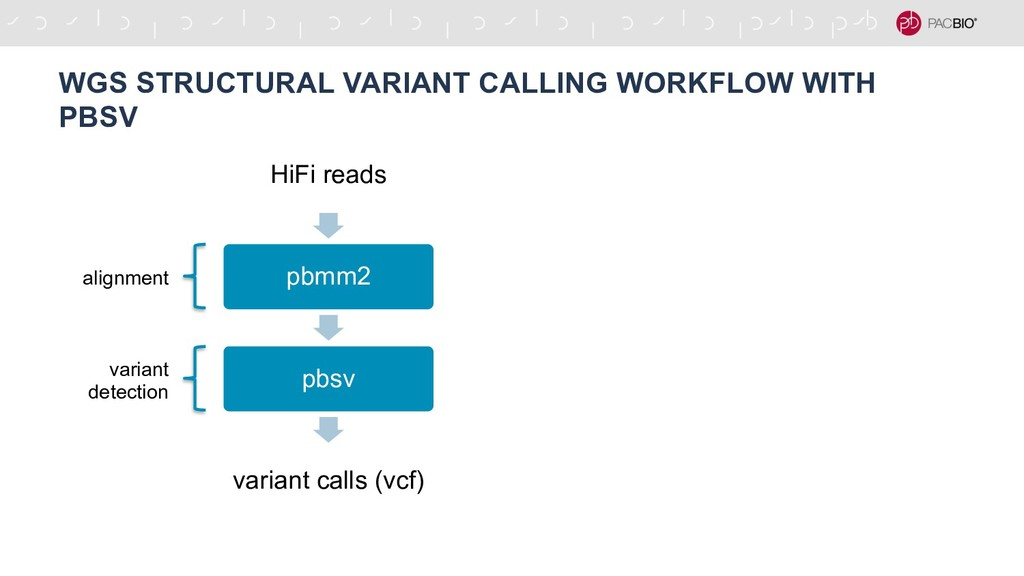 WGS STRUCTURAL VARIANT CALLING WORKFLOW WITH PB...