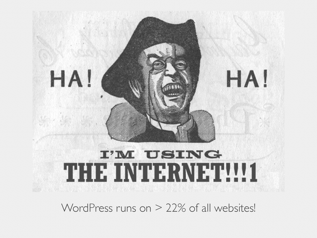 WordPress runs on > 22% of all websites!