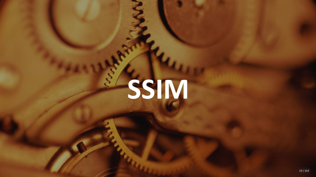 SSIM 19 / 103
