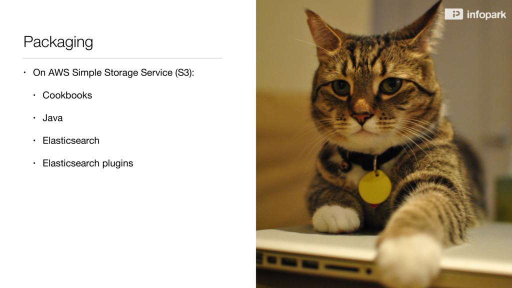 Packaging • On AWS Simple Storage Service (S3):...