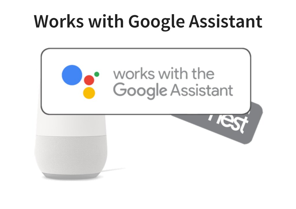 Works with Google Assistant