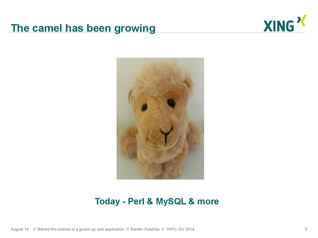 The camel has been growing Today - Perl & MySQL...