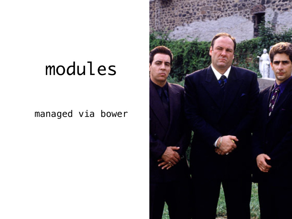 modules managed via bower