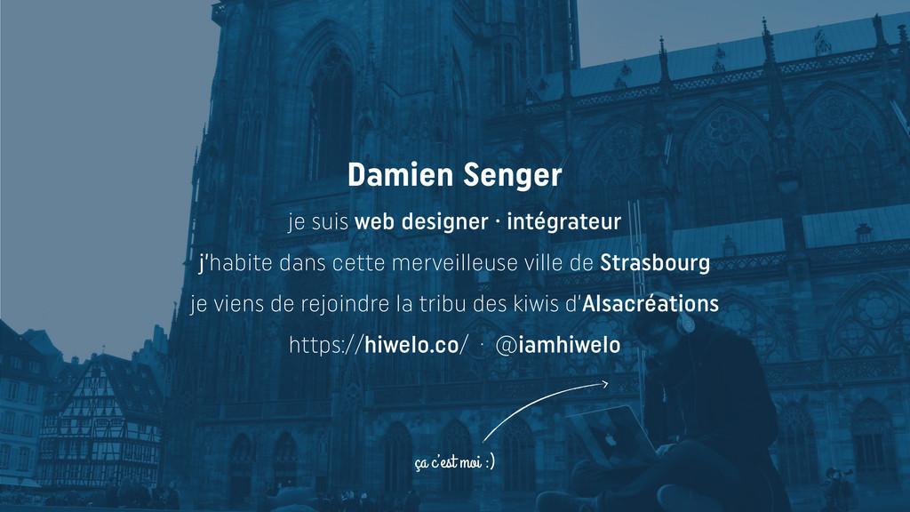 Damien Senger je suis web designer · intégrateu...