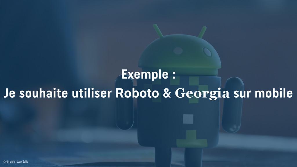 Exemple : Je souhaite utiliser Roboto & Georgi...