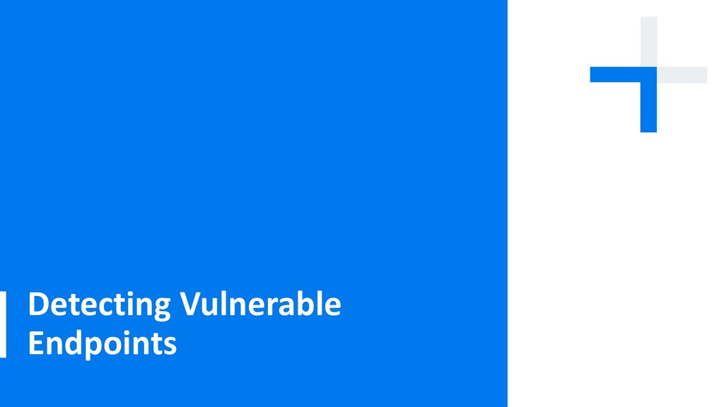 Detecting Vulnerable Endpoints