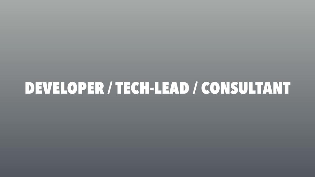 DEVELOPER / TECH-LEAD / CONSULTANT