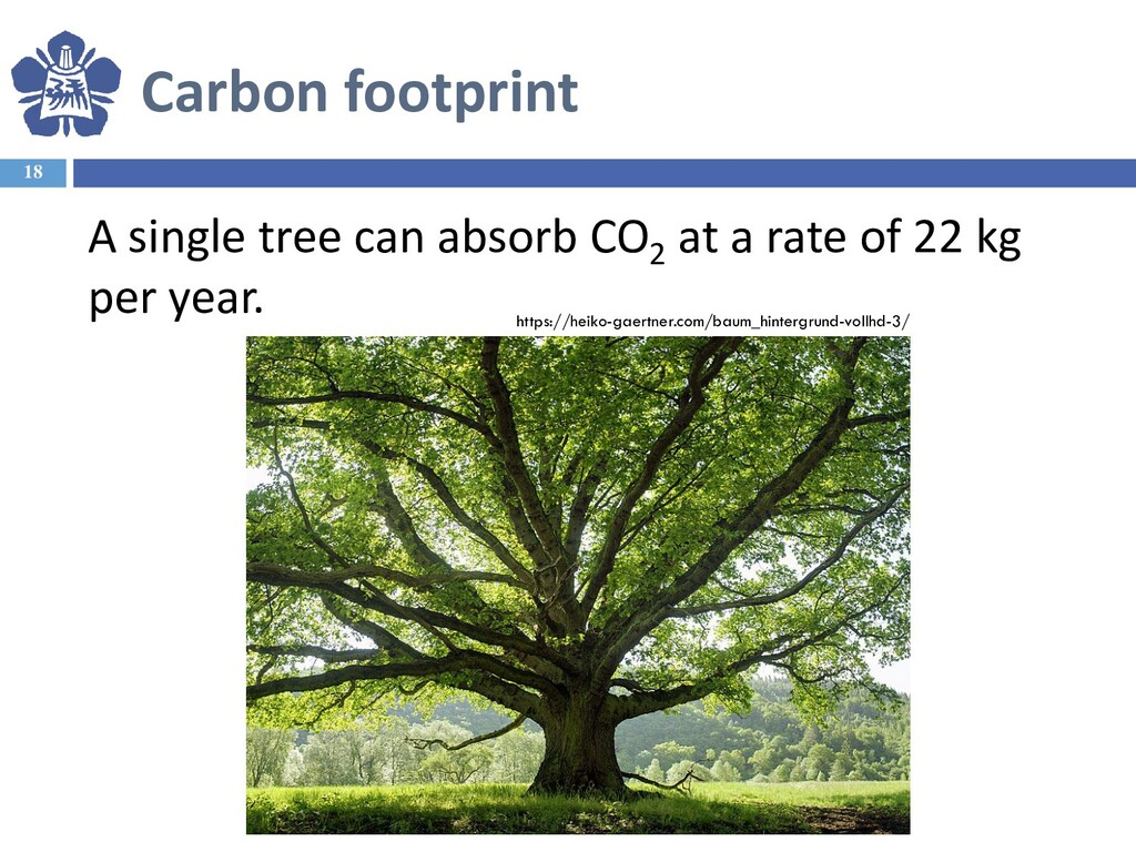 Carbon footprint 18 A single tree can absorb CO...