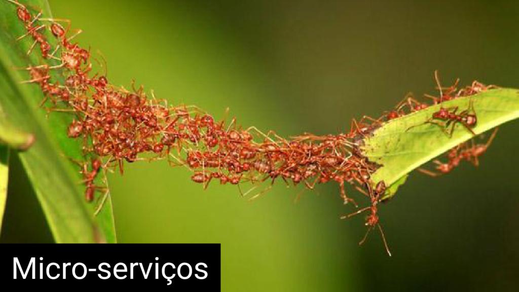 Micro-serviços