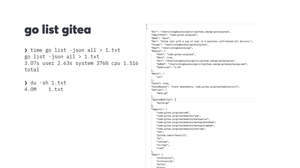 go list gitea ❯ time go list -json all > 1.txt ...