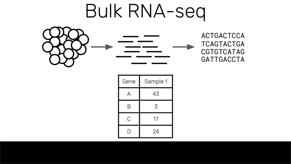 Bulk RNA-seq ACTGACTCCA TCAGTACTGA CGTGTCATAG G...