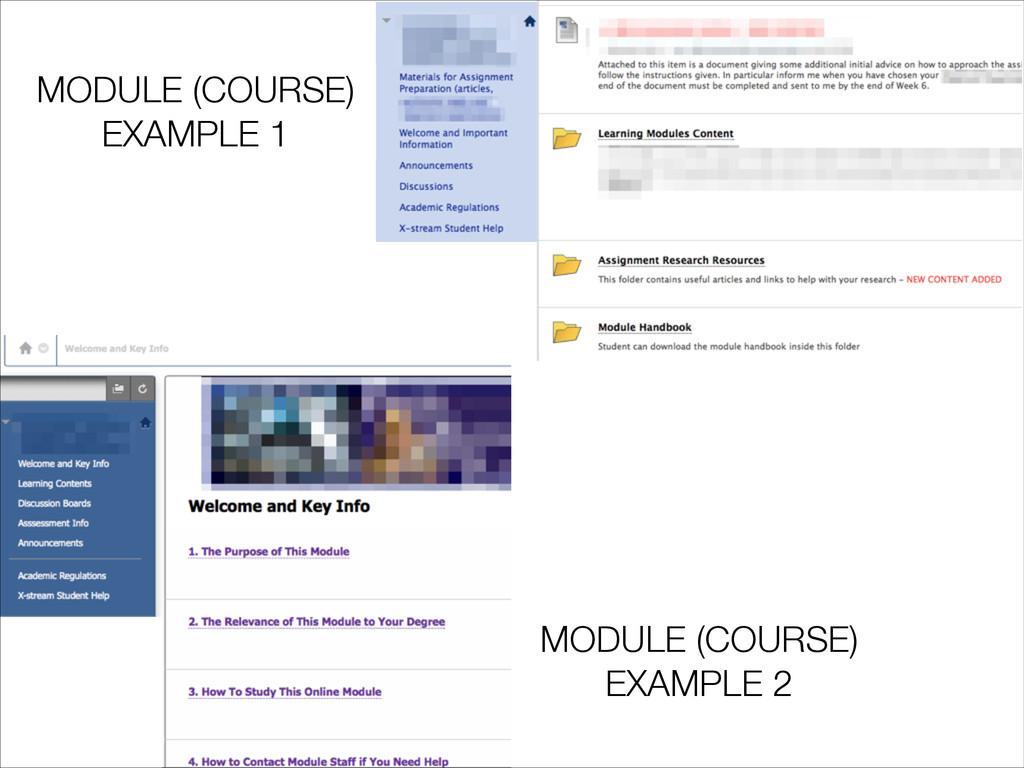 MODULE (COURSE) EXAMPLE 1 MODULE (COURSE) EXAMP...