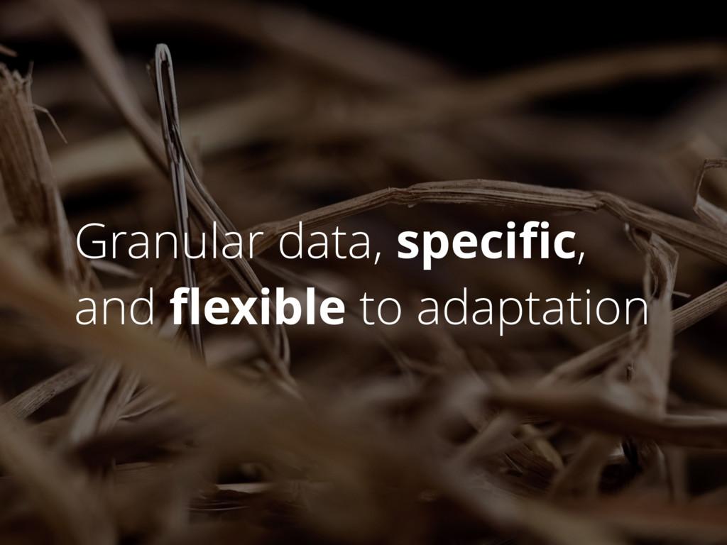 Granular data, specific, and flexible to adaptati...