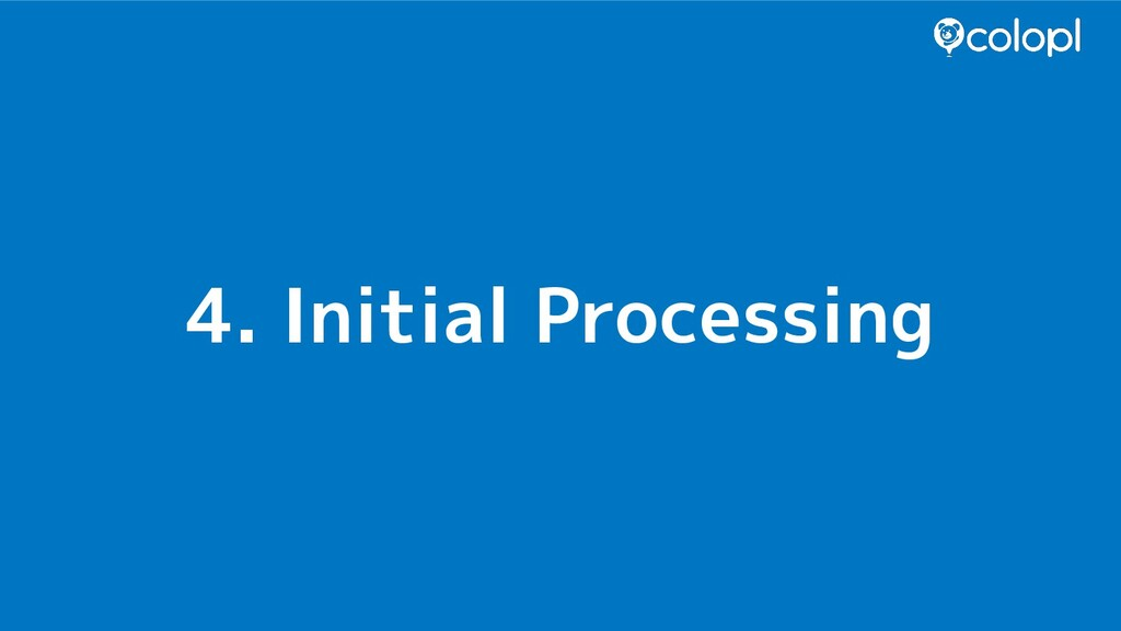 4. Initial Processing