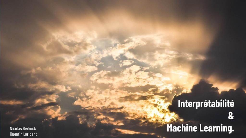 Interprétabilité & Machine Learning. Nicolas Be...