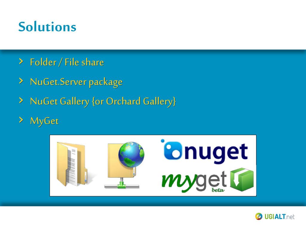 Solutions › Folder / File share › NuGet.Serverp...