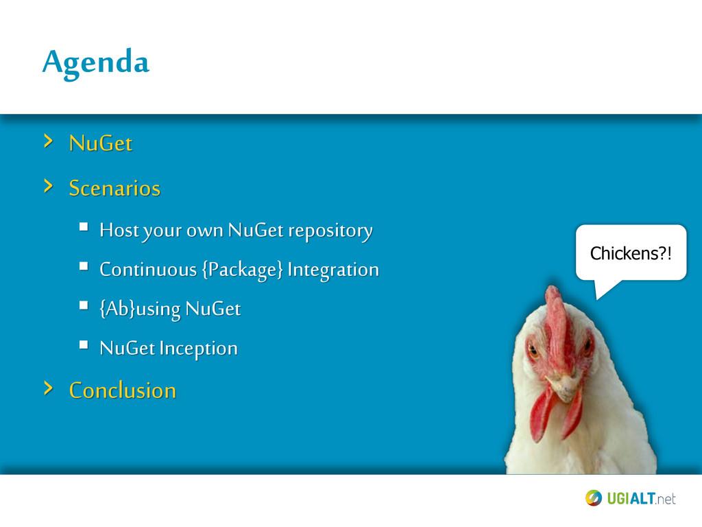 Agenda › NuGet › Scenarios  Host your own NuGe...