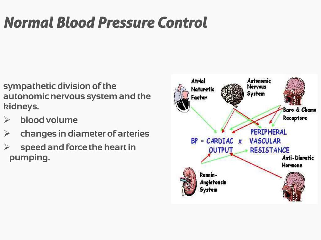 Normal Blood Pressure Control sympathetic divis...