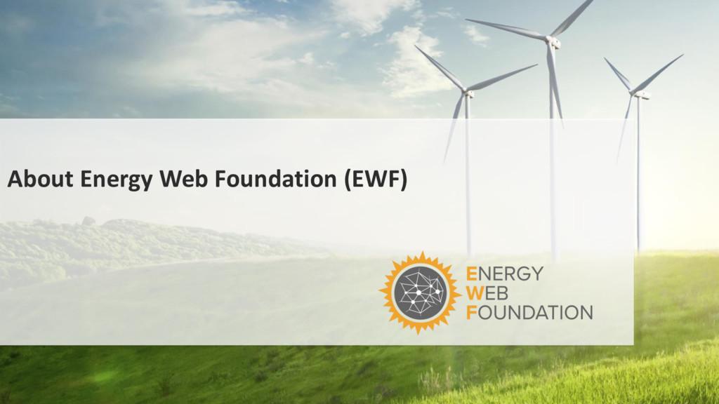 About Energy Web Foundation (EWF)