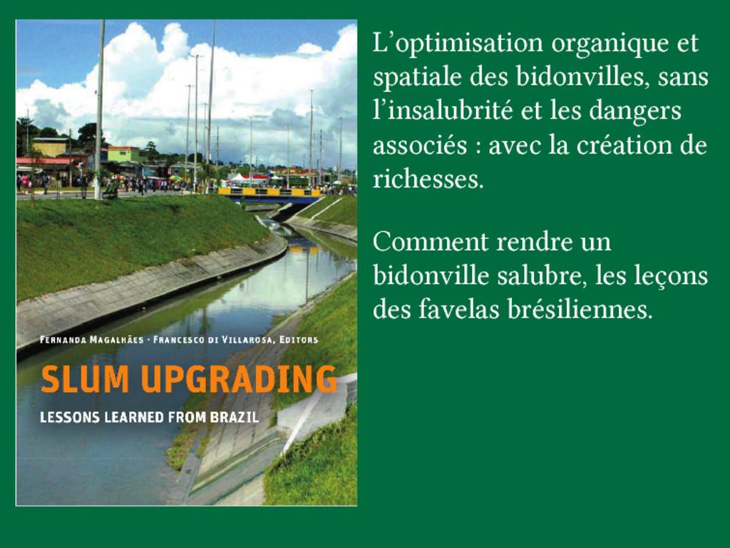 L'optimisation organique et spatiale des bidonv...