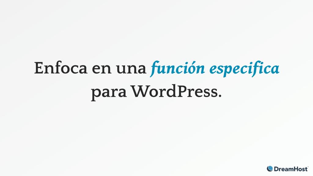 Enfoca en una función especifica para WordPress.