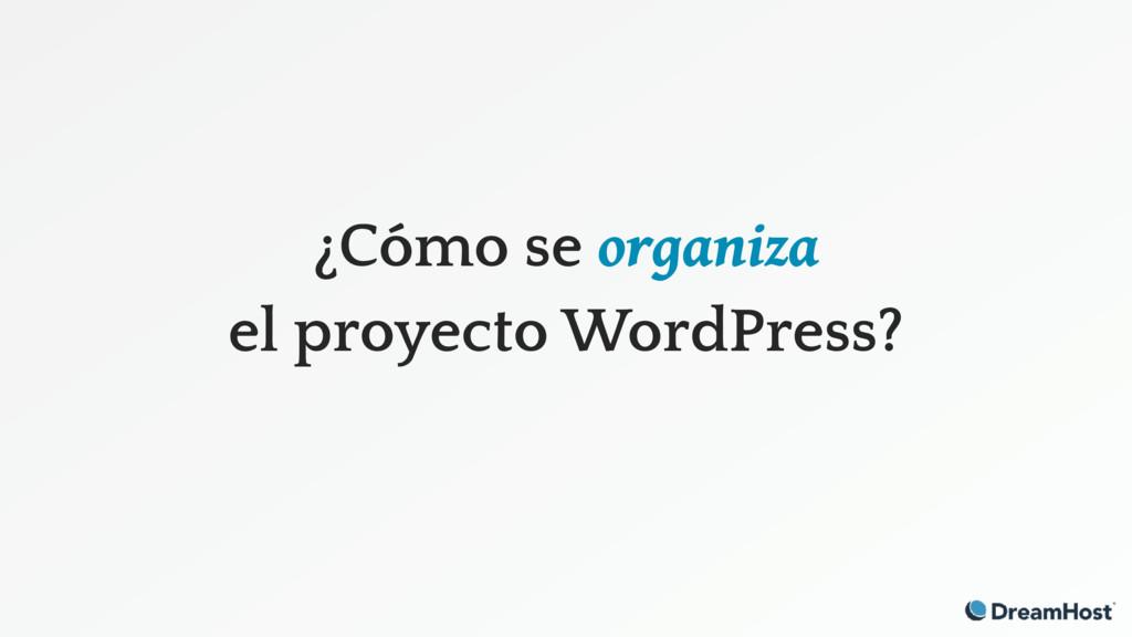 ¿Cómo se organiza el proyecto WordPress?