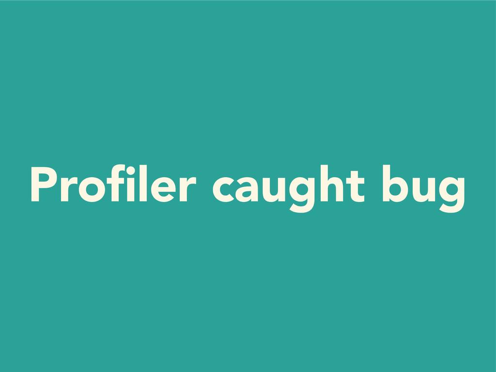 Profiler caught bug