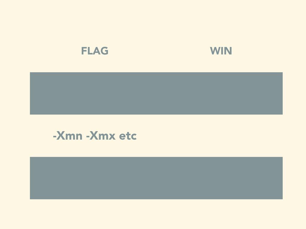 FLAG WIN -Xmn -Xmx etc